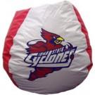 Iowa State Cyclones Collegiate Bean Bag Chair