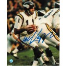 "Joe Kapp Autographed ""Dropping Back"" Minnesota Vikings 8"" x 10"" Photo"