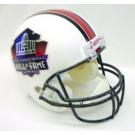 NFL Hall of Fame Riddell Full Size Replica Helmet