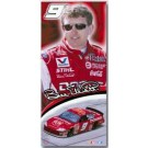 "Bill Elliott  26"" x 58"" True Life Banner"