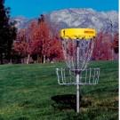 In-Ground Permanent DISCatcher® Target