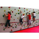 8' H x 4' W Standard Climbing Panel With 20 Groperz Hand Holds from Everlast Climbing