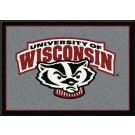 "Wisconsin Badgers ""Mascot"" 2'8""x 3'10"" Team Spirit Area Rug"