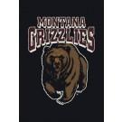"""Montana Grizzlies 22"""" x 33"""" Team Door Mat"""