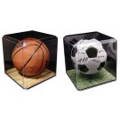 Basketball / Soccer Display Case