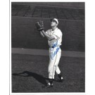 "Roy Sievers Autographed St. Louis Browns 8"" x 10"" Photograph (Unframed)"