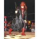 "Sting Autographed Wrestling 8"" x 10"" Photograph (Unframed)"