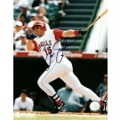 """Tim Salmon Autographed California Angels 8"""" x 10"""" Photograph (Unframed)"""