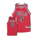 Carlos Boozer Chicago Bulls #5 Youth Revolution 30 Swingman Adidas NBA Basketball Jersey (Road Red)