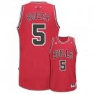 Carlos Boozer Chicago Bulls #5 Revolution 30 Swingman Adidas NBA Basketball Jersey (Road Red)