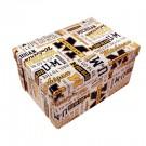 Michigan Wolverines Boxxer Folding Storage Box (Pack of 4)