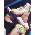 "Hulk Hogan Autographed ""vs. Andre the Giant"" 16"" x 20"" Photograph (Unframed)"