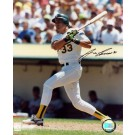 "Jose Canseco Autographed ""Swinging A's"" 8"" x 10"" Photograph (Unframed)"