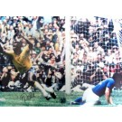 "Pele Autographed ""Goal"" Color 18"" x 24"" Photograph (Unframed)"